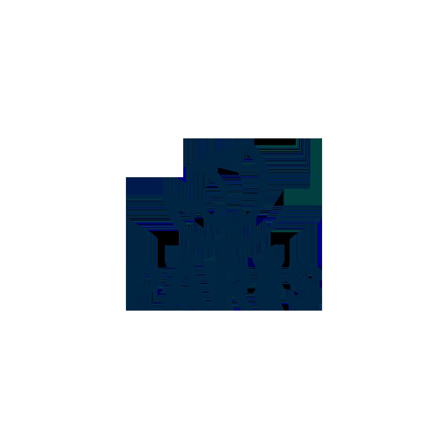 Maire de Paris